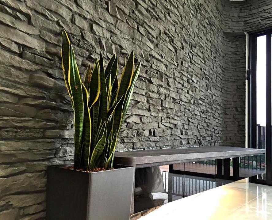 Master Of Wall Design Hereu0027s Why Wall Kustoms Is The Preferred Choice For Interior  Design Highlight